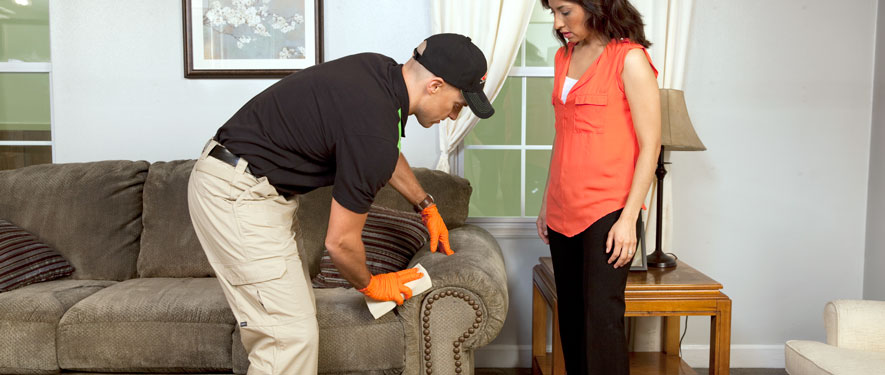 Troy, NY carpet upholstery cleaning